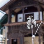 Ferienhaus Oppitz - Ferienwohnungen am Fluss nahe dem Hallstättersee - nahe Bad Goisern im Salzkammergut
