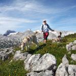 Wandern am Dachstein - ©Oberösterreich-Tourismus / Andreas Röbl